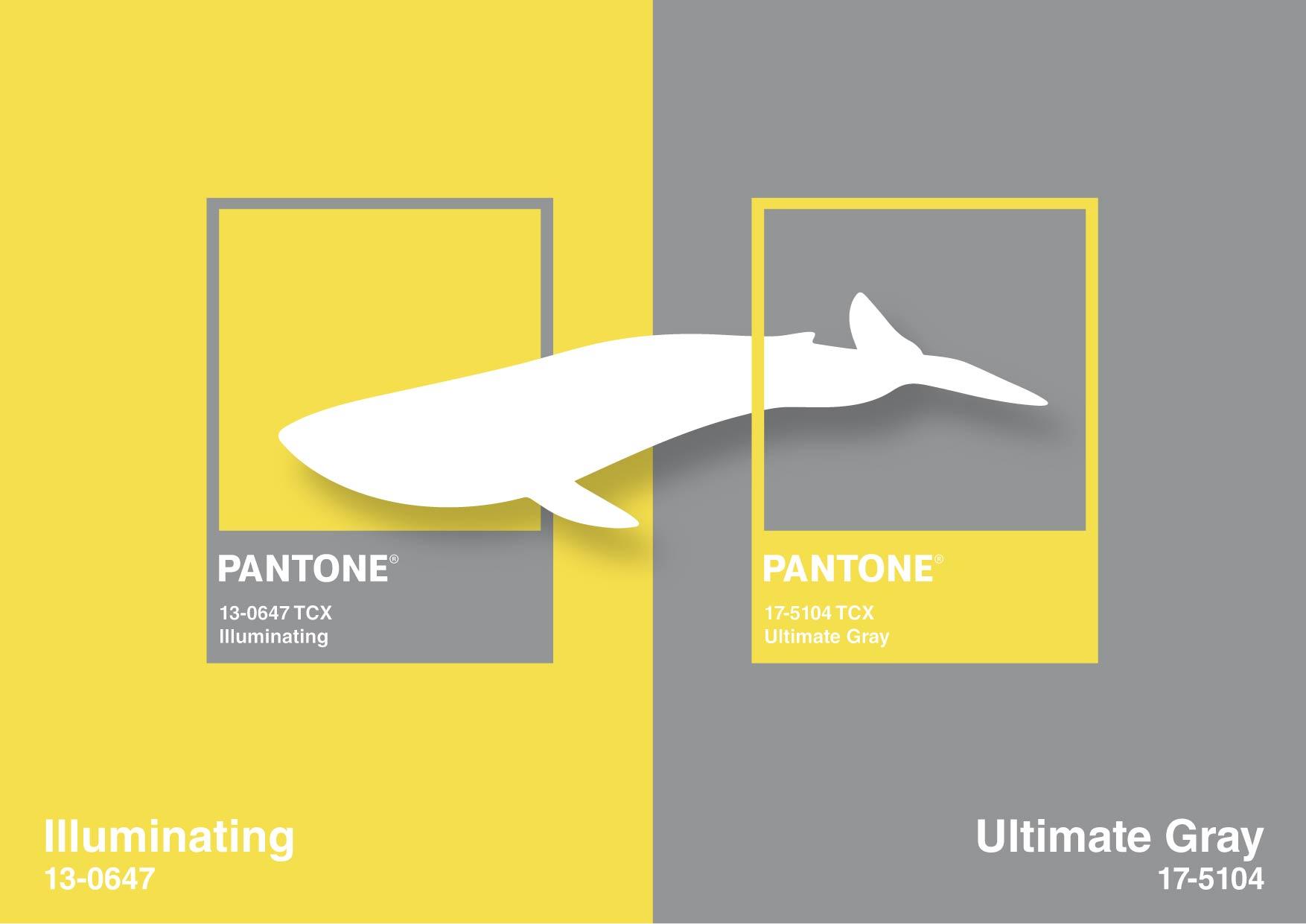 pantone color 2021 La Otra Comunicación. Agencia de publicidad creativa